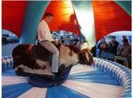 Bullriding Oktoberfest mieten